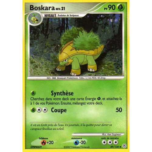 Cartes pokemon plante page 11 - Evolution tortipouss ...